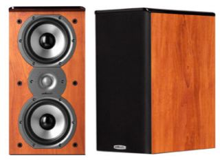 polk audio tsi200 in Home Speakers & Subwoofers
