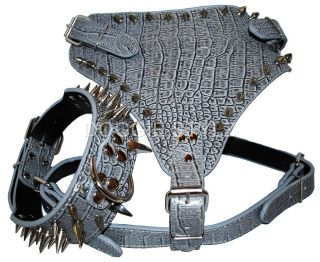 Grey Leather Dog Harness & Collar SET spikes Pitbull Bully Husky Boxer
