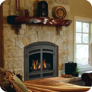 Napoleon Gas Fireplace Starfire GD70 Direct Vent arched log set NG LP