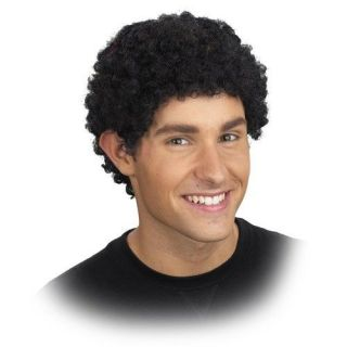 Quality Mini Afro fro African American Wig   Adult Presidential