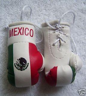 Mexico Flag Mini BOXING Gloves Cleto Reyes Grant Zepol