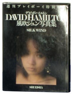 Silk Wind David Hamilton Japanese 1982 first edition Jun Fubuki