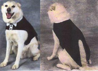 Knitting Pattern For Dogs Tuxedo : Dog Sweater Knitting Patterns Small Dogs