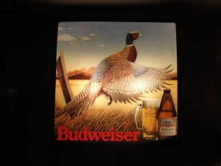 VINAGE BUDWEISER BEER LIGHED ADVERISING SIGN PHEASEN