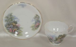 Royal Standard Fine Bone China House & Garden   Cup & Saucer Set
