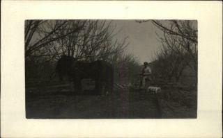 horse drawn disc in Antique Tractors & Equipment