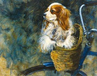 HENRY KOEHLER Easy Rider KING charles SPANIEL dog SUPERIOR edition
