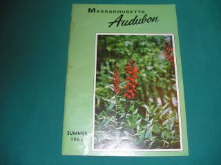 Massachusetts Audubon Society Magazine Summer 1966 Netting at High
