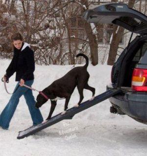 Pet Gear Travel Lite 66 Long Pet Dog Ramp TL9166BB