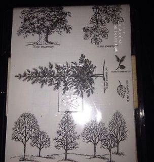UP RETIRED UNMOUNTED LOT LOVELY AS A TREE 2001 trees leaves acorn