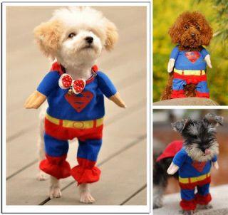 Pet Dog Cat Puppy Cotton Clothes Superman Suit outfit Costumes size XS