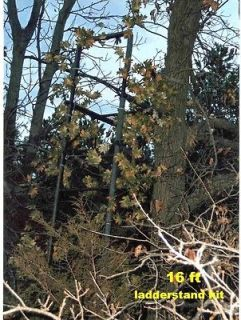 deer ladder stands in Tree Stands