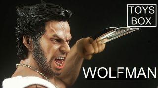 Toys Box WOLFMAN Hot Wolverine Thor Godfather Babydoll Blade