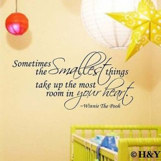 Smallest Things Kids Wall Art Quote Vinyl Stickers Removable Decal