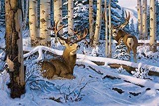 50023 Bad Scent Deer 550 Pc Puzzle Artist Hayden Lambson W/Free