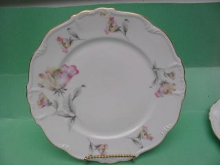 EDELSTEIN   BAVARIA    IRISH ROSE   DINNER PLATE    # 21615    10 3