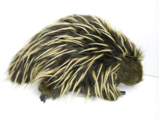 Folkmanis Porcupine Hand puppet Full Bodied Puppet