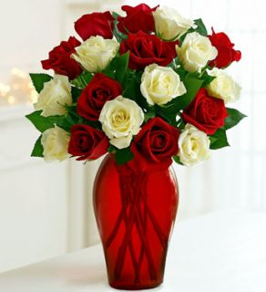Winter Rose Bouquet  Holiday Christmas Roses  1 800 FLOWERS