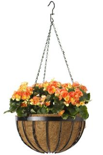 Diamond Hanging Basket   Planters   Accessories   Outdoor