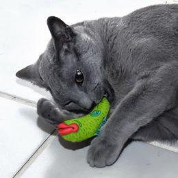 AppeTeasers Plush Catnip Cat Toy   Plush Cat Toy   1800PetMeds