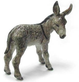 northern rose r235 miniature donkey kid  11