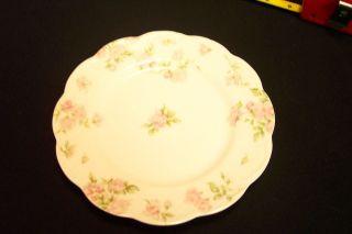 Haviland Limoges Salad Plate Pink Roses Schl #39C H&CO Blank #5