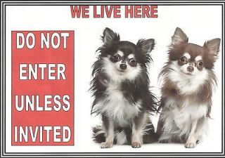 WE LIVE HERE DO NOT ENTER 2 LONG HAIRED CHIHUAHUAS PEEL n STICK SIGN