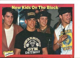 New Kids on the Block, Full Page Pinup, NKOTB, Danny Wood