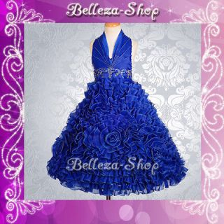 Blue Wedding Flower Girl Pageant Party Dress Size 3T 4T