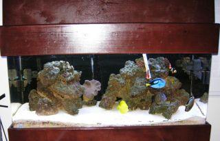 NR 75 gallon and 50 gallon saltwater fish reef tank acrylic aquarium