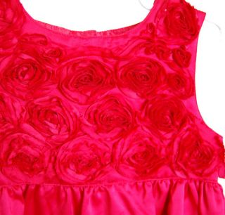 Carters Child Girl Red Rose Christmas Valentines Day Dress Size 5T
