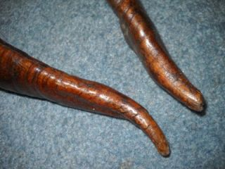 Pair of 2 Antelope Horns Antlers Twisted Spiral 21 Long