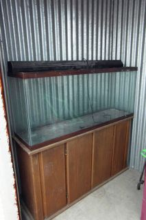FISH TANK 55 GALLON GLASS AQUARIUM   WOOD STAND   LIGHT FIXTURE