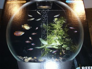 Biorb Round Aquarium 8 Gallons Low Maintenance Reef One
