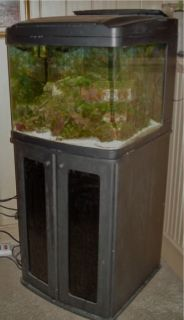 Biocube 29 Gallon Saltwater Aquarium Fish Tank COMPLETE with Stand