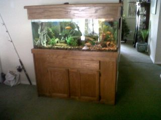 55 Gallon Aquarium Fish Tank Wood Stand with Canopy