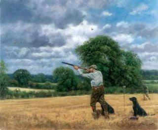 10 Assorted Shooting Gamebird Gun Dog Birthday Cards