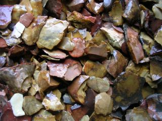 Rocks Tumbling Garden Aquarium Arkabutla Ms Shards Chips Minerals