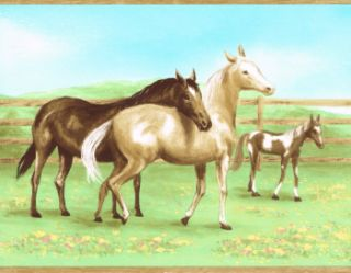 Country Horses Colts Kids 9 Wide in The Paster Wallpaper Border Wall