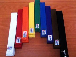 Martial Arts Belt Karate Taekwondo Judo Jiu Jitsu Size 000 6 All Color