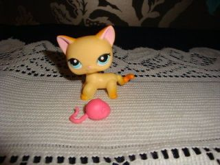 littlest pet shop short hair cat in Littlest Pet Shop