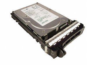 Dell 300 GB,Internal,10000 RPM,3.5 HC492 Hard Drive