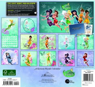 Disney Fairies Animation Art 16 Month 2013 Wall Calendar, NEW SEALED