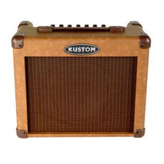SIENNA65 65 WATTS ACOUSTIC GUITAR AMPLIFIER COMBO W 12 AMP SPEAKER NEW