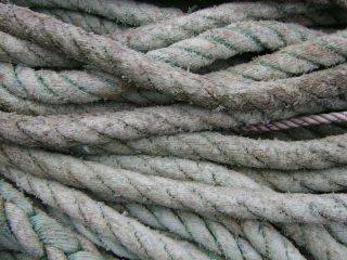 20 Feet Tow Nylon Mooring Rope Alaska King Crab Pot Floats