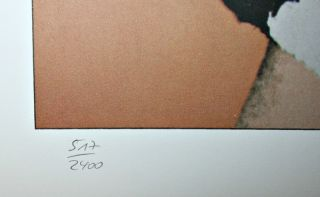 Andy Warhol Original Signed Numbered Lithograph Caroline Ireland