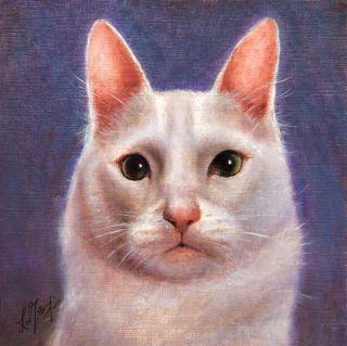 Oil CAT Portrait Painting TURKISH ANGORA Art on Canvas WHITE KITTEN