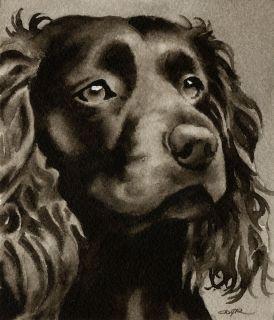 Boykin Spaniel Watercolor Dog Art 13 x 17 Signed DJR