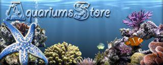 Established Aquarium Shop Fish Tank Heater Filter Decoration Business