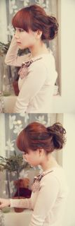 Stylish Dish Hair Bun Wig Ponytail Accessories Hairpiece Updo